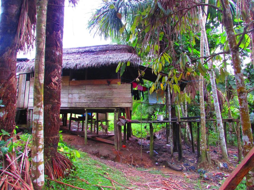 Comunidad Indigena 20 de Julio Amazonas