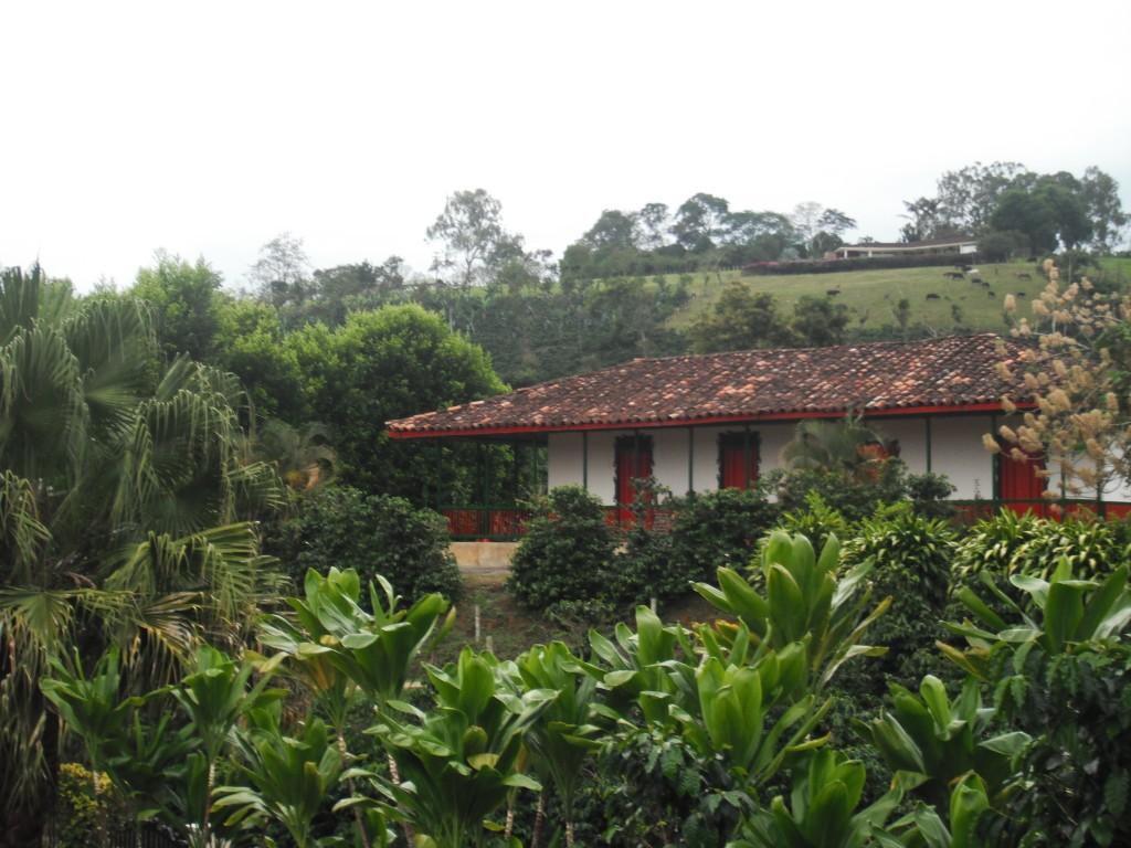 Información viajar a Pereira