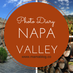 Napa Valley Photo Diary – Napa Valley Diario Fotografico